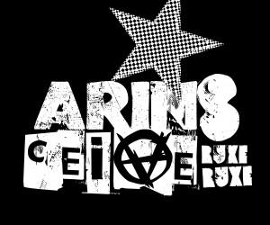 ARINS final